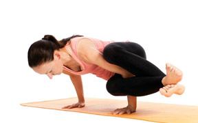 Curso a distancia (Online) de Hatha Yoga