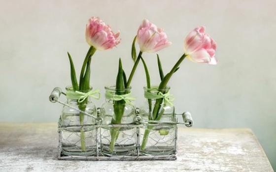 Curso online de Decoración con Plantas y Flores