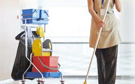 Curso online de Limpieza Profesional en Edificios y Locales