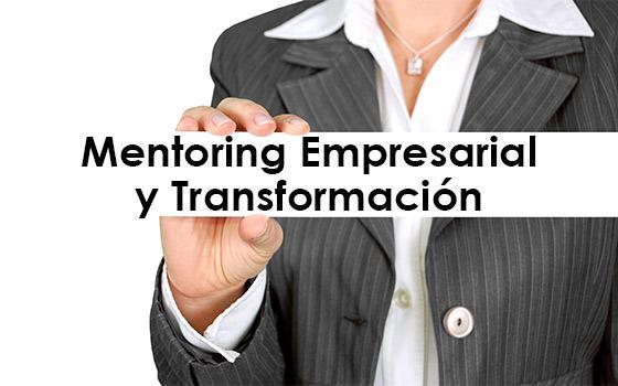 Curso online de Mentoring Empresarial y Transformación