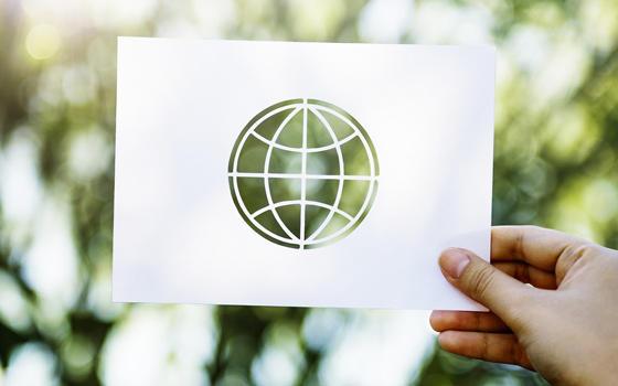 Curso online de Monitor en Educación Ambiental