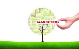 Curso virtual (Online) de Marketing Ecológico