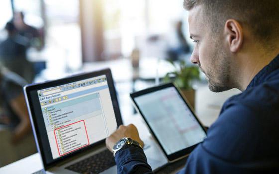 Curso online SAP R3 Ventas y Distribución (SD)